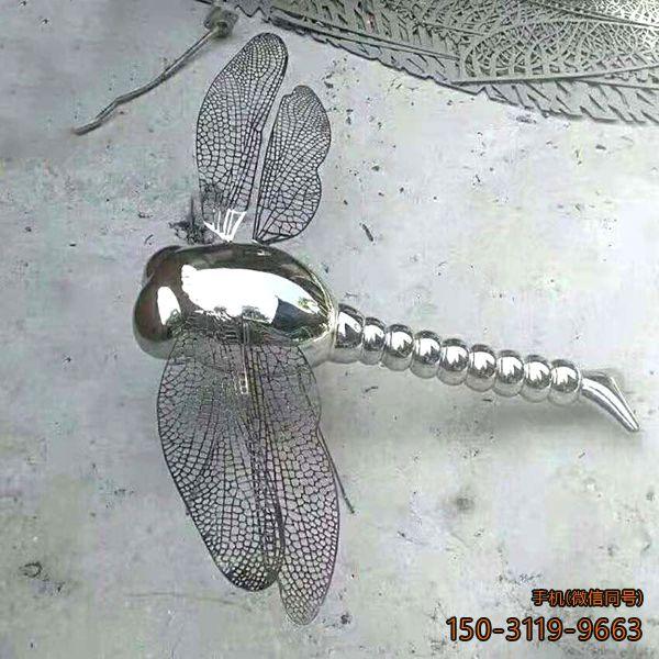 镜面不锈钢蜻蜓