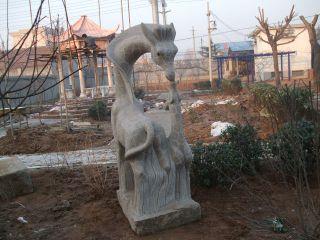 动物长颈鹿汉白玉石雕